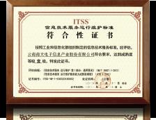 ITSS信息技术服务运行维护标准符合性一级